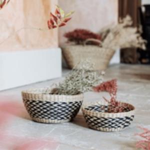 nomad chevron seagrass bowls
