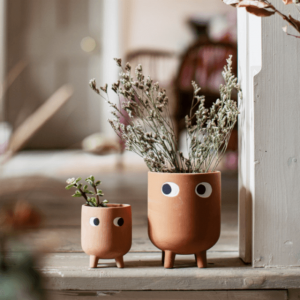 large peepers terracotta planter