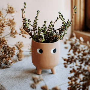 little peepers terracotta planter