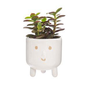 little smiley face planter