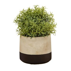 slate grey cement planter